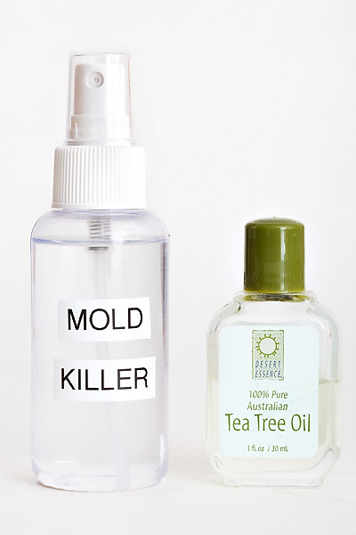 Kill Mold and Mildew with Tea Tree Oil Review – Does it Work