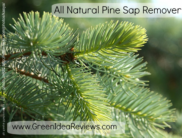 All Natural Pine Sap Remover